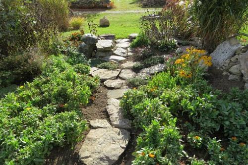 garden-207164__340
